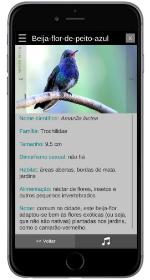 app aves da região bragantina